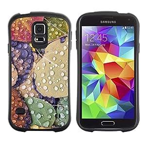 Suave TPU Caso Carcasa de Caucho Funda para Samsung Galaxy S5 SM-G900 / Leaves Rain Autumn Fall Dew Drops Nature / STRONG