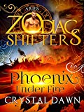 Bargain eBook - Phoenix Under Fire
