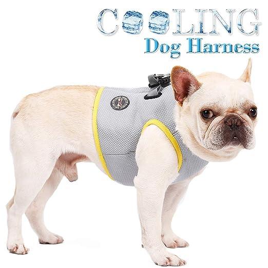 Festnight DogLemi Pet Dog Cooling Chaleco Arnés Chaqueta Cooler ...