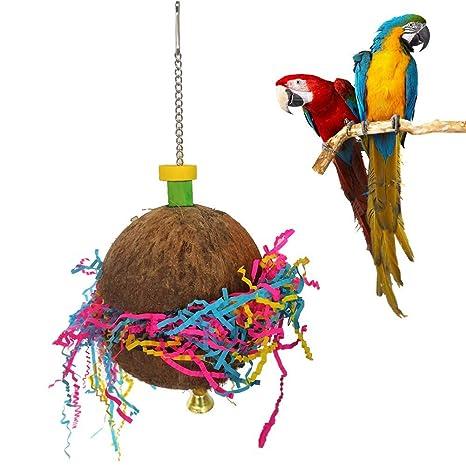 Whiie891203 Juguete para Loros, Loros, Concha de Coco para pájaro ...