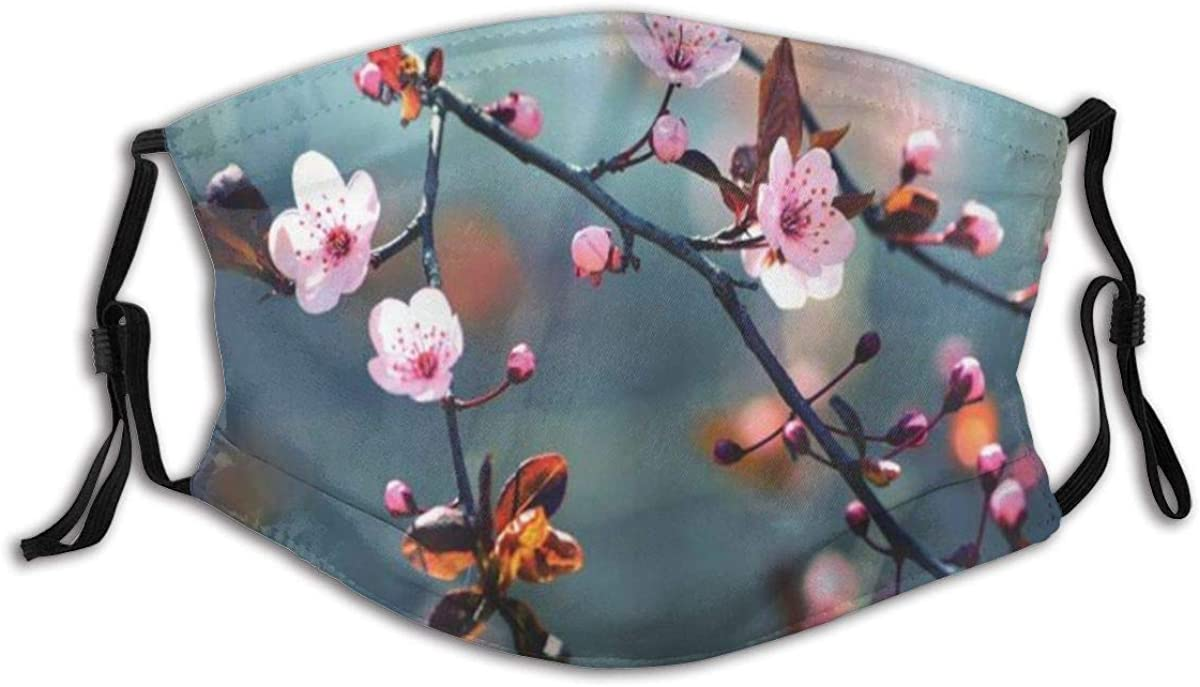 Adult Mask Nature Japanese Blooming Cherry Tree Flowers On Branch Sakura Theme Picture Fabric Cotton Face Masks Washable Cloth Masks for Men Women Cycling Camping Travel
