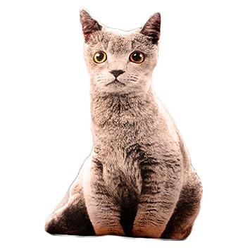 Black Temptation Creativo Simulación 3D Animales de Peluche Juguetes Gato Gato Fish Almohada Cojín Regalo de Cumpleaños #18: Amazon.es: Juguetes y juegos