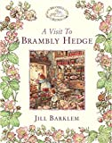 img - for A Visit to Brambly Hedge book / textbook / text book