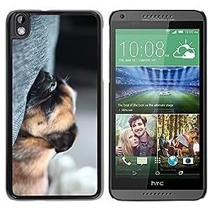 TopCaseStore / la caja del caucho duro de la cubierta de protección de la piel - Sleeping Pug Puppy Tired Dog Shorthair - HTC DESIRE 816