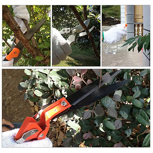 Garden tools set pathonor 12 pieces plant care garden for Gardening tools malaysia