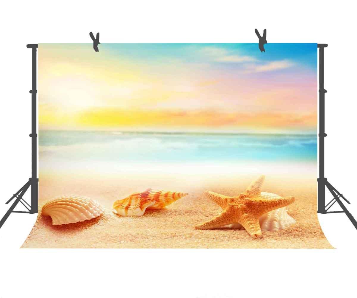 Seaside 写真背景 結婚式 写真 背景 スピリチュアル 旅行 スタジオ 自然 風景 ビーチ 写真 ブース YouTube背景 9x6ft LXST100 B07FLKM8SL