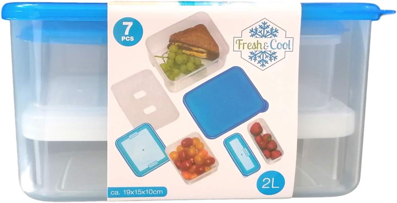 Fresh & Cool - Juego de fiambreras con acumulador de frío y recipiente para alimentos