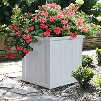 Amazon Com Cape Cod Rectangular Planter Box Size 20 X 20 Color