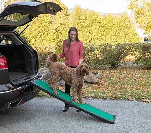 Buy pet ramp