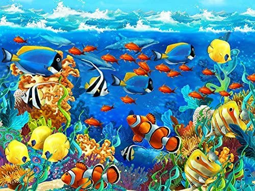 Tropical Fish Oil Painting Re-print Framed Canvas Prints Wall Art Deco Pictures