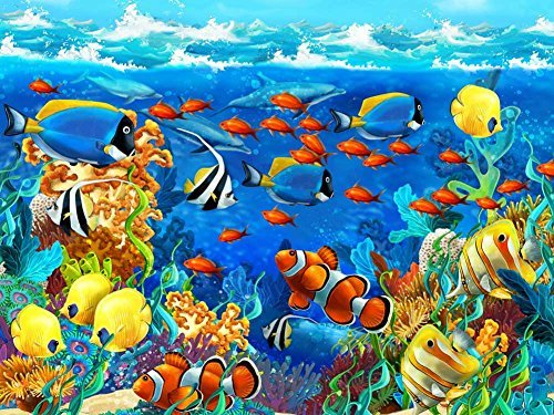 - Tropical Ocean Underwater Coral Sea Reef Fishes -Oil Painting On Canvas Modern Wall Art Pictures For Home Decoration Wooden Framed (20X16 Inch, Framed)