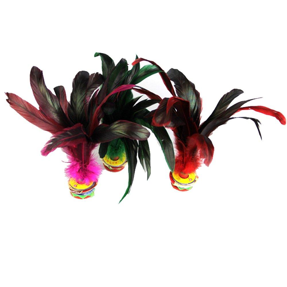 Sports de plein air Jeu de volant Jianzi chinois Plume chinoise multicolore