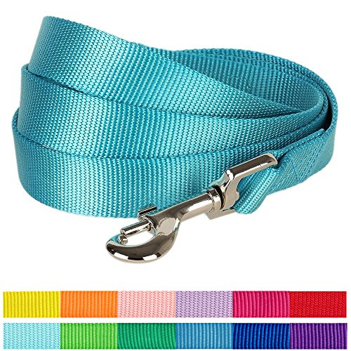 Blueberry Pet 12 Colors Durable Classic Dog Leash 5 ft x 5/8