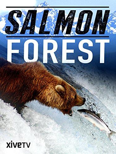 Atlantic Salmon - Salmon Forest
