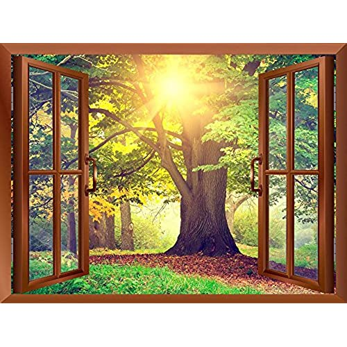 Nature Wall Murals: Amazon.com