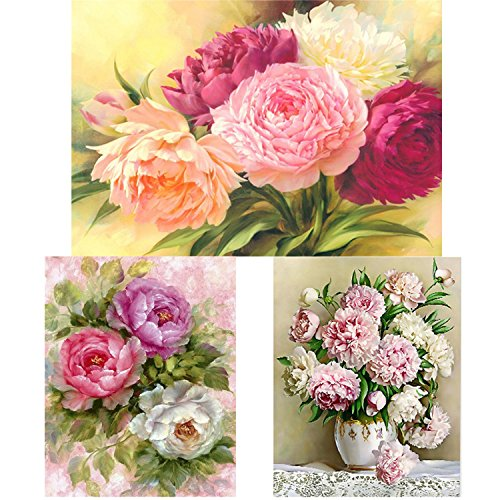 Aneco 3 Pack DIY 5D Diamond Painting Kits Full Drill Peony Flowers Rhinestone Embroidery Cross Stitch Paintings for Arts Craft Decor