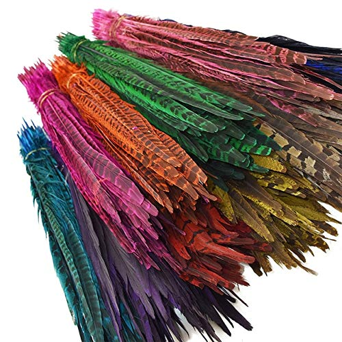 Maslin 24pcs/lot Long 25-30cm Natural Dyeing Pheasant Tail Feathers for DIY Flower Arrangement Headdresses Accessories IF16 - (Color: Mixed Color)