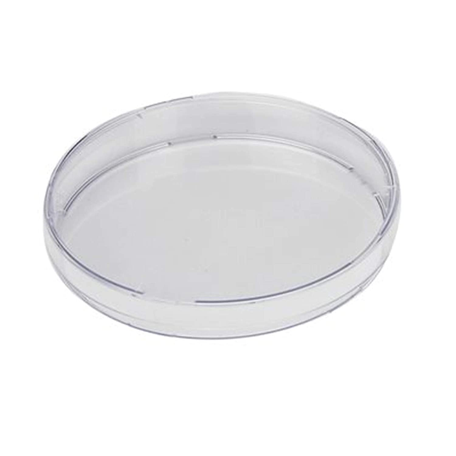DISCOVERY LABWARE 354492 Polyethylene Terephthalate Fibronectin Cellware Insert in 4 x 12 Well Plates 3 /µm Membrane Pore Size