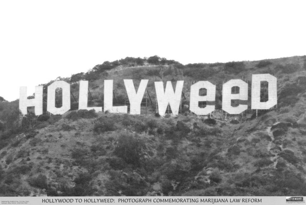 Hollyweed Sign Art Poster Print - 24x36 Poster Print, 36x24