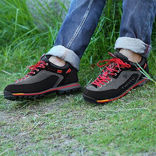 Zpl Camminare Trekking Signore All'aria Trekking Pizzo Da Delle Arrampicata Grigio Aperta Per Scarpe Da Donne Scarpe Eqqf4A
