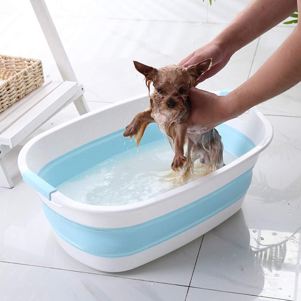 perro pequeño mojado  dentro de bañera portatil de color azul y blanco