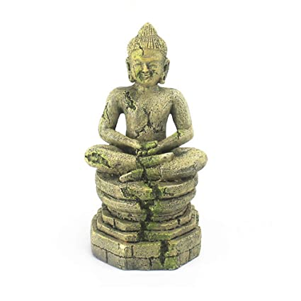 Amazon.com : Ganesh Buddha Aquarium Ornaments, Exotic Environments Statue Decorations with Moss Fish Tank & Reptile & Amphibian Habitat Decor Accessories ...