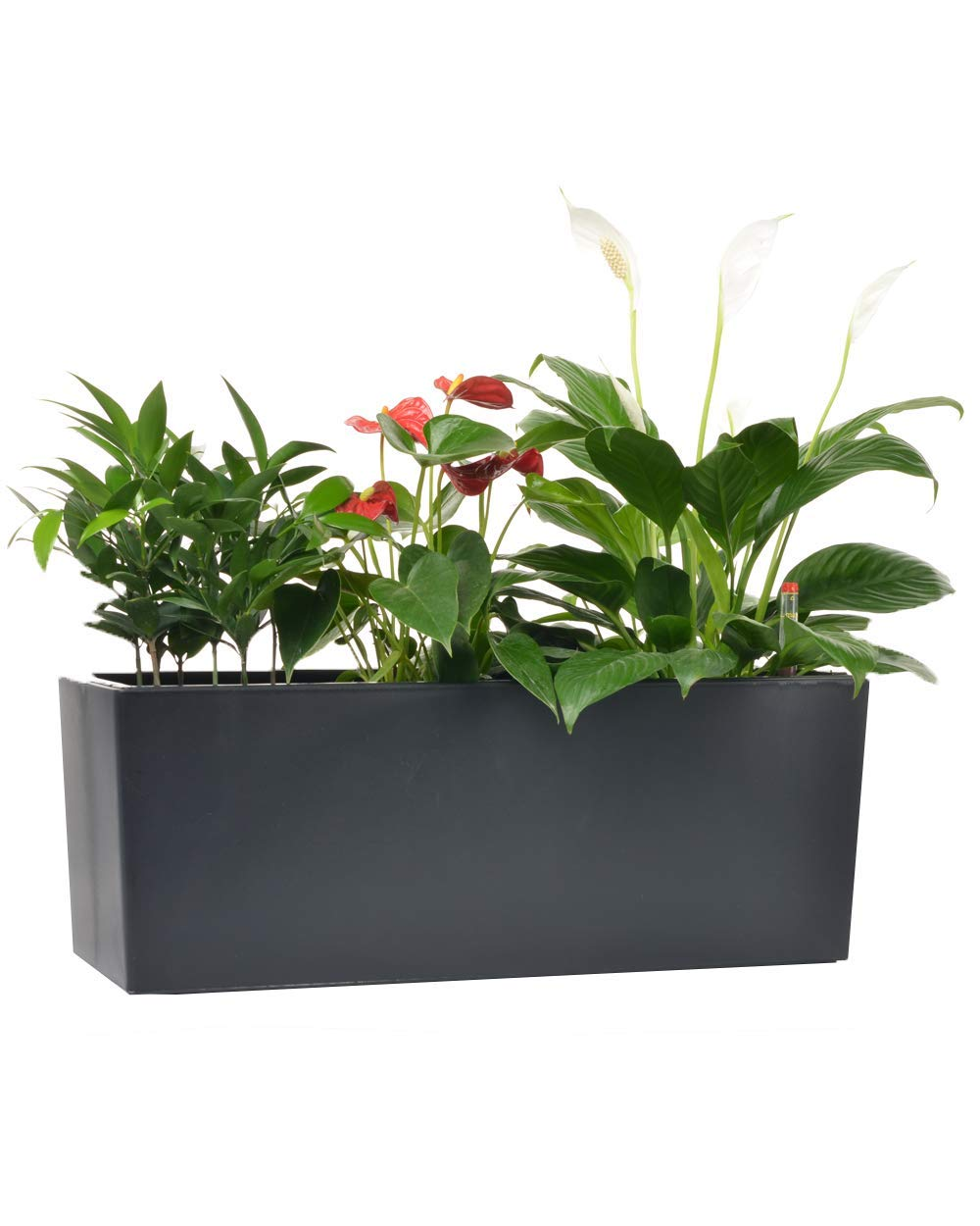 Self Watering Planter Pots with 10 Quarts Coco Soil 7.5 x 20 inch Indoor Outdoor Home Garden Herb Flower Pot for Hanging Railing Balcony Tabletop (1, Black(7.5''x 20''))