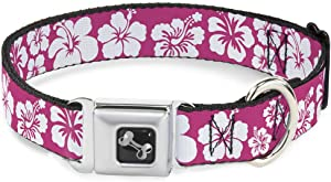 Buckle-Down Seatbelt Buckle Dog Collar - Hibiscus Neon Pink/White