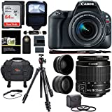 Canon EOS Rebel SL2 DSLR Camera with EF-S 18-55mm STM Lens, Sandisk Professional 633x 64GB, Manfrotto Compact Light Aluminum Tripod and Accessory Bundle