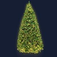 Jingle Jollys 1.8m 6ft Christmas Tree 874 LED Lights 874 Tips Warm White Green