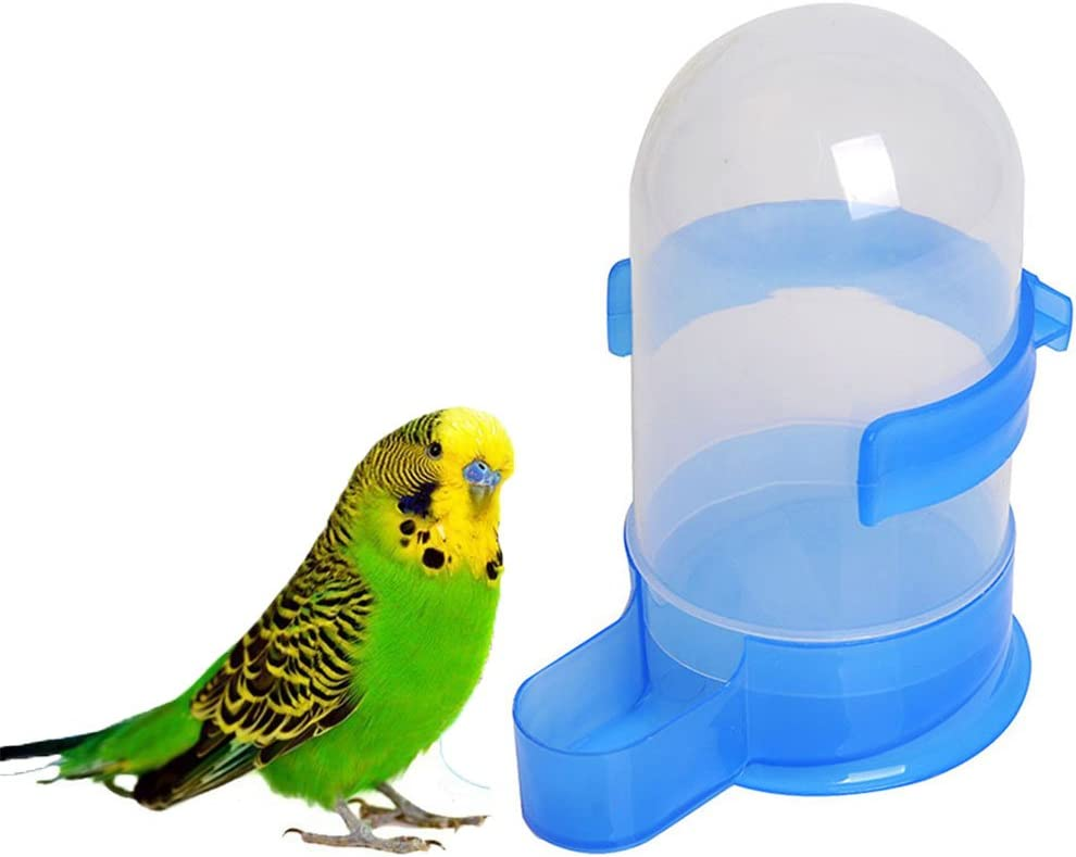 Bird Seed Food Water Feeding Feeder Bowl Dispenser for Parrot Macaw African Grey Budgie Parakeet Cockatiel Conure Lovebird Dove Cage