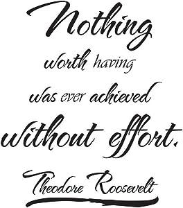 Empresal Vinyl Wall Art Theodore Roosevelt Quote Sticker Decal Decor Inspirational J14