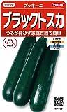 サカタのタネ 実咲野菜1100 ブラックトスカ ズッキーニ 00921100