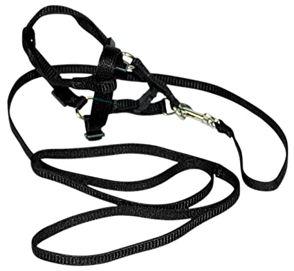Dog Harness With Tie