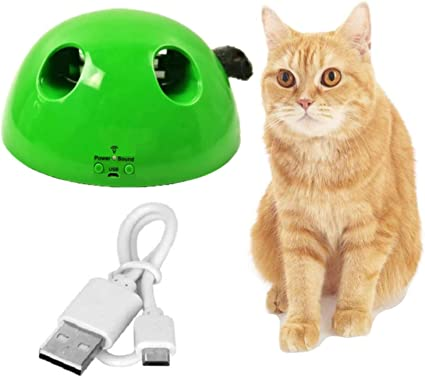 M JJYPET Cat Toys for Cats and Dogs, 2 Packs Rechargeable Cat Exercise Toy