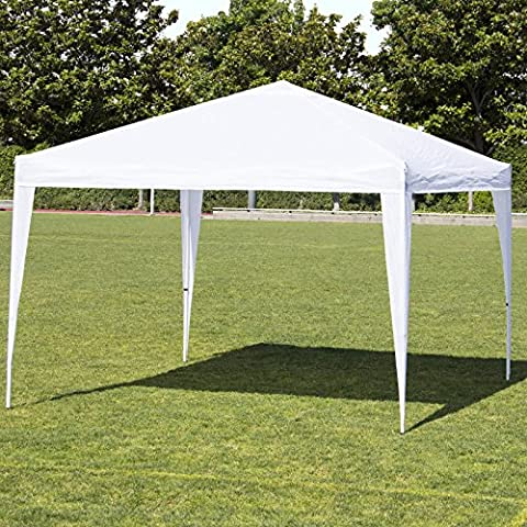 Canopy Tent Custom 10x10 Up Pop Commercial Bag Carrying Case Frame (First Up Screen Curtain)