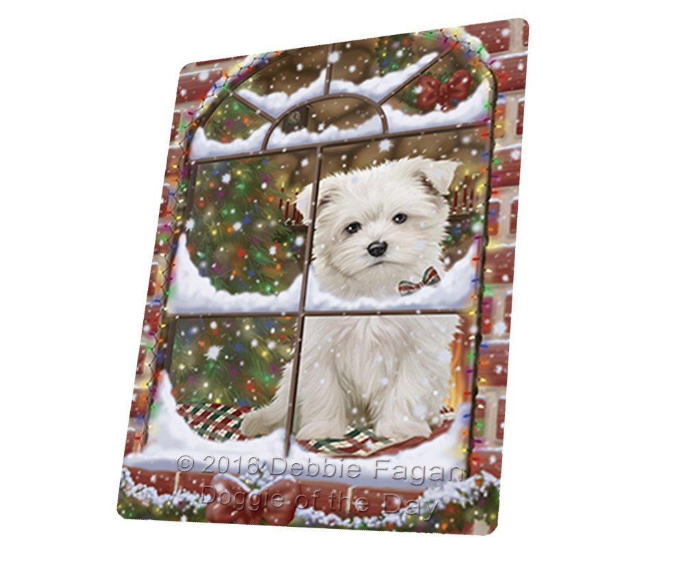 Please Come Home For Christmas Maltese Sitting In Window Art Portrait Print Woven Throw Sherpa Plush Fleece Blanket (60X80 Woven)
