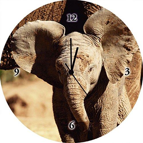 Artland Qualitätsuhren I Funk Wanduhr Designer Uhr Glas Funkuhr Größe: 35 Ø Wildtiere Elefant Braun G3IJ