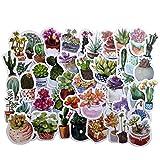 50PCS Cute Cactus and Succulent Plants Stickers Cute Scrapbook Planner Album Laptop Journal DIY Craft Decorative