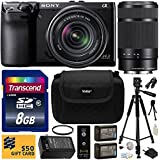 Sony NEX-7 NEX7 NEX7K 24.3 MP Compact Interchangeable Lens Camera with 18-55mm Lens & Sony E 55-210mm F4.5-6.3 OSS Lens for Sony E-Mount Cameras with Beginner Accessories Bundle Kit includes 8GB Class 10 SDHC Memory Card + x2 Replacement (1200mAh) NP-FW50 Battery + Home Wall Charger with Car and European Adapter + Professional 60 Inch Photo/Video Tripod + Ultra Violet UV High Definition Filter + Hard Shell Carrying Case + Wireless Shutter Release Remote + Camera Lens Cleaning Kit + Bonus for