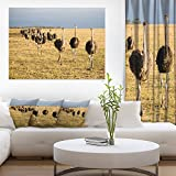 Ostriches Walking in South Africa African Canvas Art Print