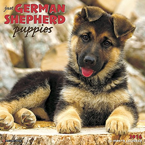 [B.o.o.k] 2016 Just German Shepherd Puppies Wall Calendar DOC