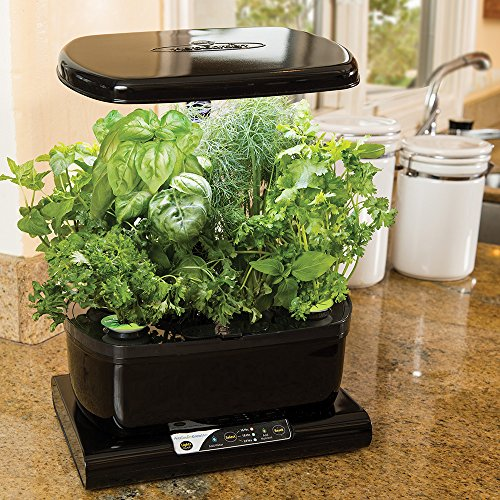 61On%2BOn4duL - Miracle-Gro AeroGarden Harvest with Gourmet Herb Seed Pod Kit, Black