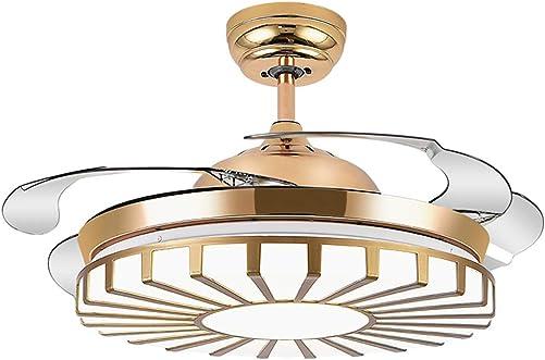 42″ Modern Ceiling Fan Light