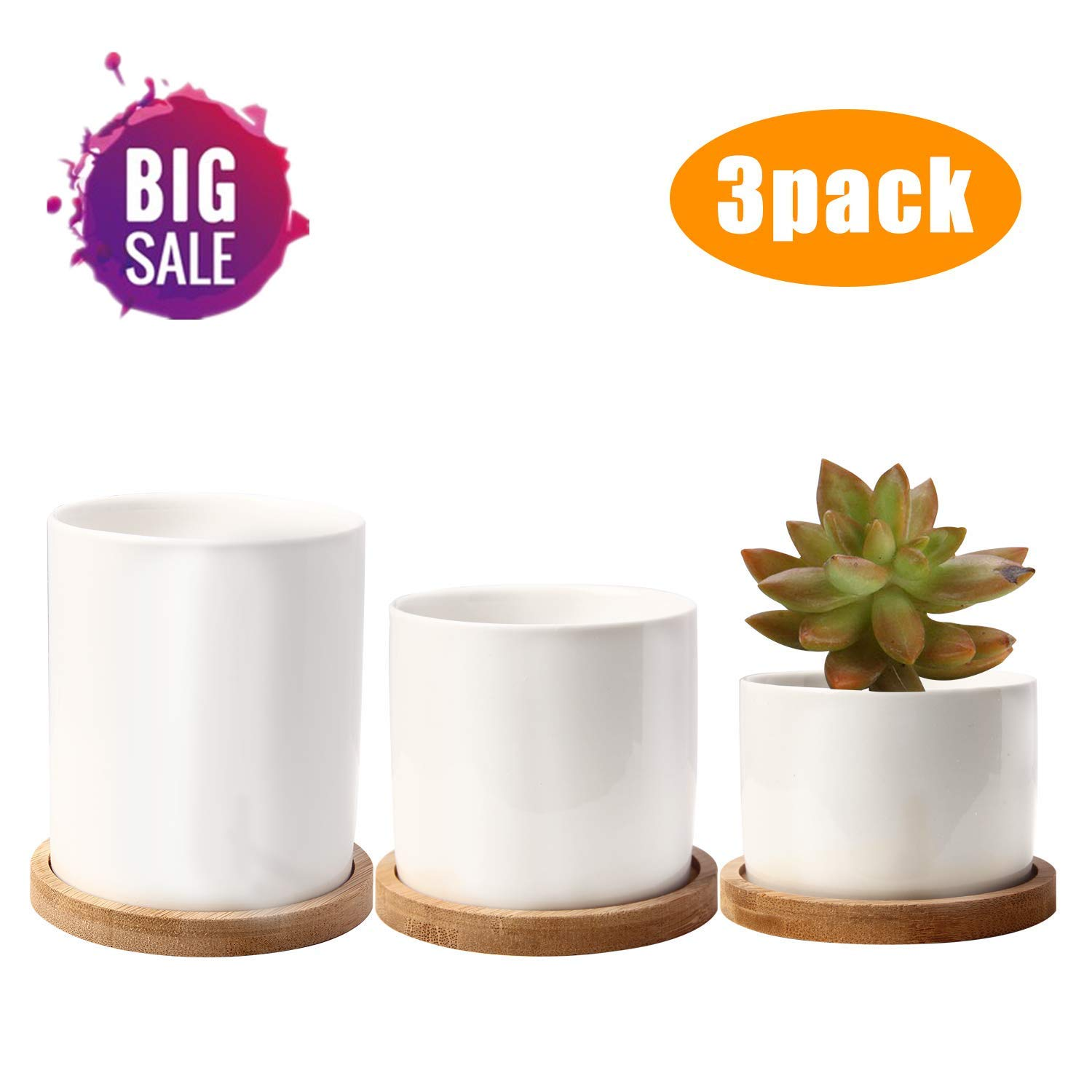 Ceramic Succulent Planter Pot With Drainage Small to Medium,Round Modern Flower Pots 3.15 Inch,White Garden Pots With Bamboo Tray For Flower,Cactu,Succulent,Plant Pots With Holes Different Size Set of