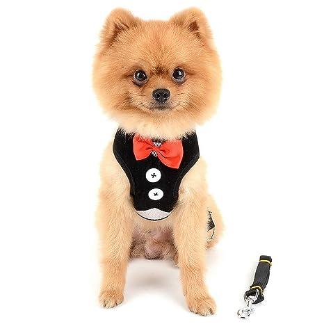 smalllee _ Lucky _ store, ajustable Tuxedo arnés chaleco para mascotas pequeñas perro gato suave