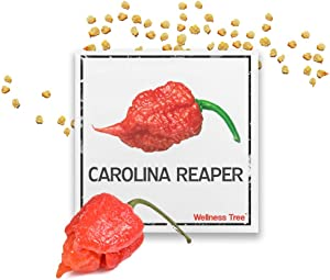 Premium Carolina Reaper Seeds - World's Hottest Pepper Carolina Reaper Chili Seed Packet - Non GMO Premium High Germinated Seeds Guaranteed (30)
