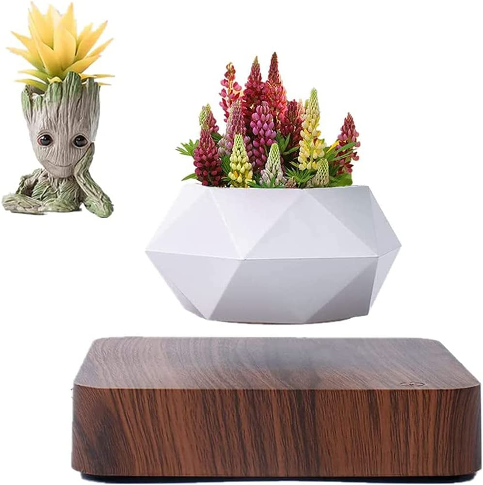 Levitating Plant ,Levitating Air Bonsai Pot, Rotation Flower Pot Planters, Prsent Floating Plant Pot for Home Office Display Decoration GCM