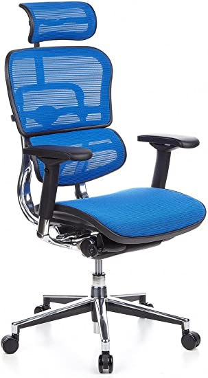 hjh OFFICE 652150 Chefsessel ERGOHUMAN Netzstoff Blau hochwertiger Bürodrehstuhl mit Vollausstattung