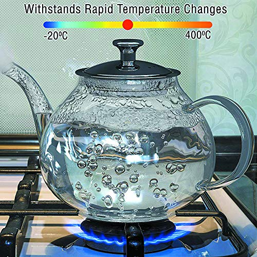 Glass Tea Pot Set - Loose Leaf Tea Pot with Infuser and Lid - Large Teapot with Strainer - Tea maker 40 (Best Glass Teapots)